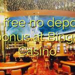 60 free no deposit bonus at Bingo Casino