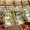 70 no deposit casino bonus at MoonGames Casino
