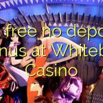 115 free no deposit bonus at Whitebet Casino