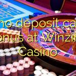 125 no deposit casino bonus at Winzino Casino