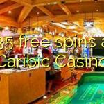 135 free spins at Caribic  Casino