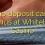 30 ekki inná spilavítum bónus á Whitebet Casino