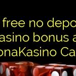 75 free no deposit casino bonus at LeijonaKasino Casino