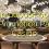 15 Promosyon Sayfa Casino'da hiçbir para yatırma bonusu