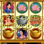 25 giri gratis all'istante Bingo Casino