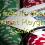 105 free no deposit bonus at Playgrand Casino