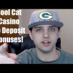 Cool Cat Casino No Deposit Bonus Codes for 2016
