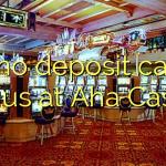 170 no deposit casino bonus at Aha  Casino