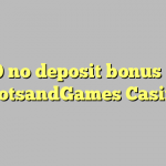 20 no deposit bonus at SlotsandGames Casino