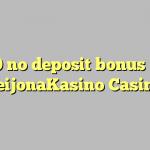 30 no deposit bonus at LeijonaKasino Casino