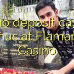 55 no deposit casino bonus at Flamantis Casino