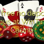 85 free no deposit bonus at WinTingo Casino