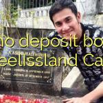 85 no deposit bonus at ReelIssland Casino