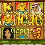 105 free no deposit bonus at ReelIssland Casino