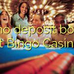 20 no deposit bonus at Bingo Casino