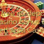 35 free no deposit casino bonus at Nettiarpa Casino