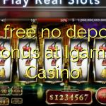50 free no deposit bonus at Igame Casino