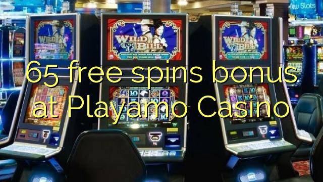 free online casino no deposit required crazy cactus