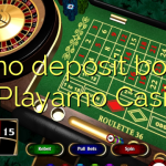 90 no deposit bonus at Playamo Casino