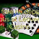 95 free no deposit bonus at Leovegas Casino