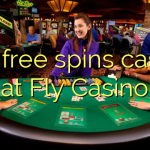 100 free spins casino at Fly Casino