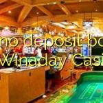 100 no deposit bonus at Winaday Casino