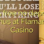 105 free no deposit bonus at Flamantis Casino