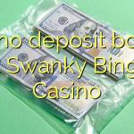 125 no deposit bonus at Swanky Bingo Casino