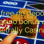 15 free no deposit casino bonus at Betrally Casino