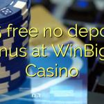 155 free no deposit bonus at WinBig21 Casino