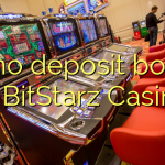 40 no deposit bonus at BitStarz Casino