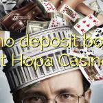 40 no deposit bonus at Hopa Casino