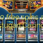 50 free spins at stugan Casino
