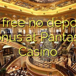 55 free no deposit bonus at Pantasia Casino