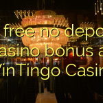 70 free no deposit casino bonus at WinTingo Casino