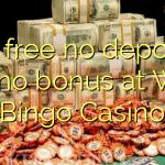 70 free no deposit casino bonus at Wink Bingo Casino