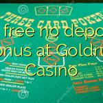 85 free no deposit bonus at Goldrun Casino