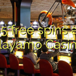85 free spins at Playamo Casino