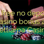 95 free no deposit casino bonus at Nettiarpa Casino