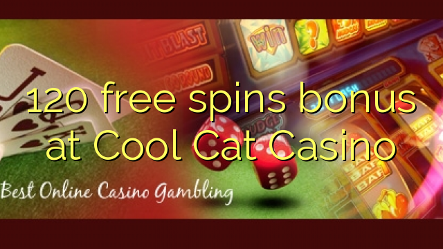 Cool Cat Casino Bonus Free No Deposit Bonus Codes