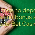 125 free no deposit casino bonus at NederBet Casino