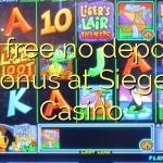 casino online with free bonus no deposit bok of ra