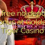 30 free no deposit bonus at Golden Tiger Casino