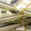 40 free no deposit bonus at Las Vegas Casino