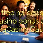 40 free no deposit casino bonus at SveaCasino Casino