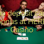 55 no deposit casino bonus at HERE Casino