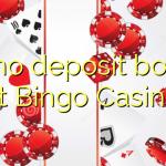 65 no deposit bonus at Bingo Casino