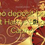 45 no deposit bonus at Harrys Bingo Casino