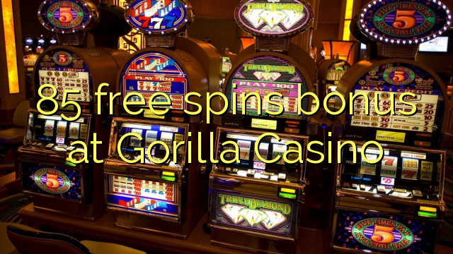 online casino video poker gorilla spiele