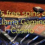 95 free spins at Llama Gaming Casino
